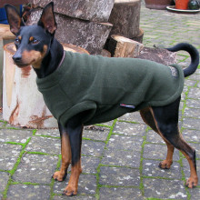 Dog Tankie in Loden Green