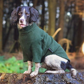 Well-worn Loden Green Dog Jumper