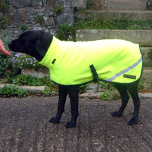 Polo Neck Coat in Fluorescent Yellow