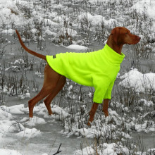 Dog Jumper in Fluorescent Yellow