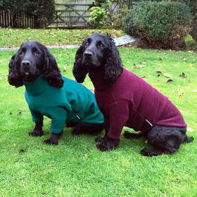 Teal and Mulberry Jumpers