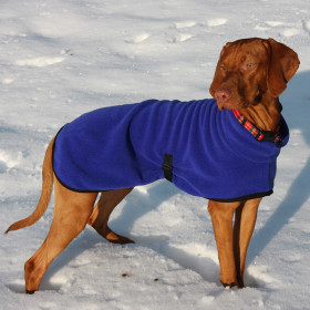 Cobalt Blue Polo Neck Coat