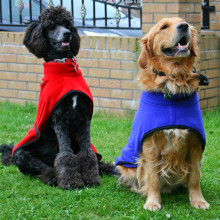 Polo Neck Coats in Red and Cobalt Blue
