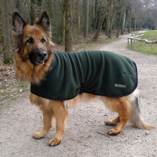 Polo Neck Coat in Loden Green