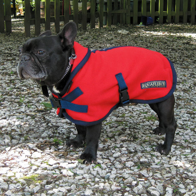 Polartec Fleece Dog Coat Rainproof Breathable Warm And Washable