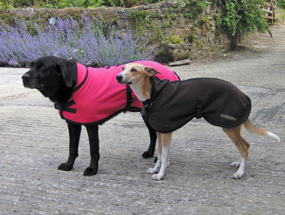 Large Dog Jackets Uk