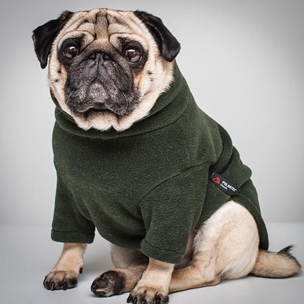 Polartec Fleece Dog Jumper Rainproof Breathable Warm And